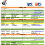 Sorties 2015: le programme du premier trimestre